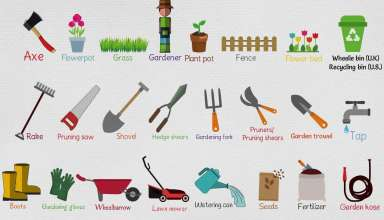 Tips On Choosing The Right Tools For Your Garden