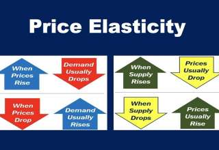 What is Price Elasticity of Demand?