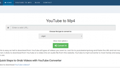 Top 5 Best YouTube to MP4 Online Converters