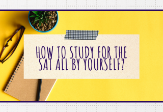 How to study for the SAT all by yourself?