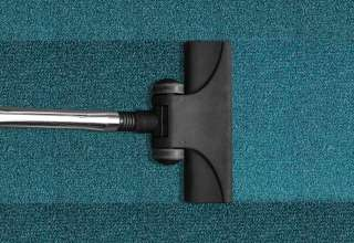 Fast & Effective Method - How to Remove Pet Urine from Carpet