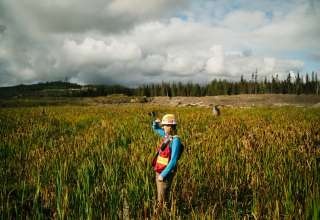 7 Critical Study Tips for Students Studying Environmental Science