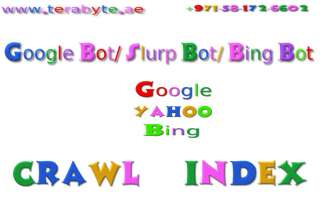 Crawling Indexing and GoogleBot IN Search Engine Optimization