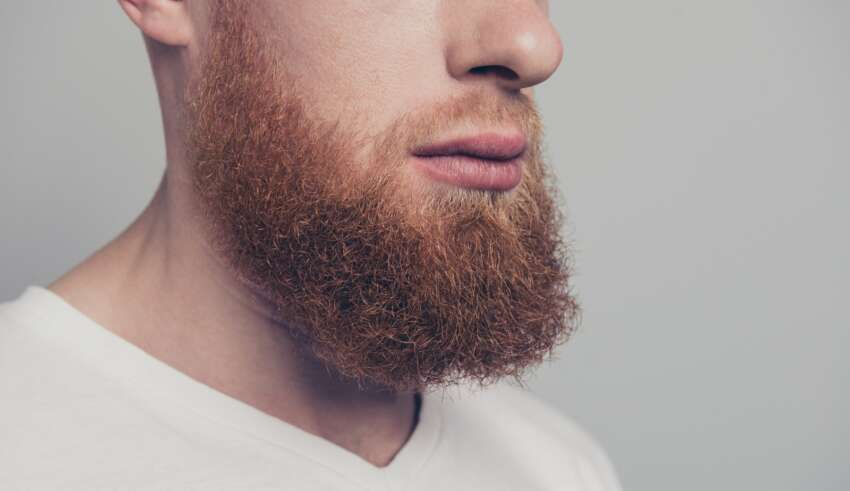 Tips For Choosing The Best Beard Care Products- Beards Base